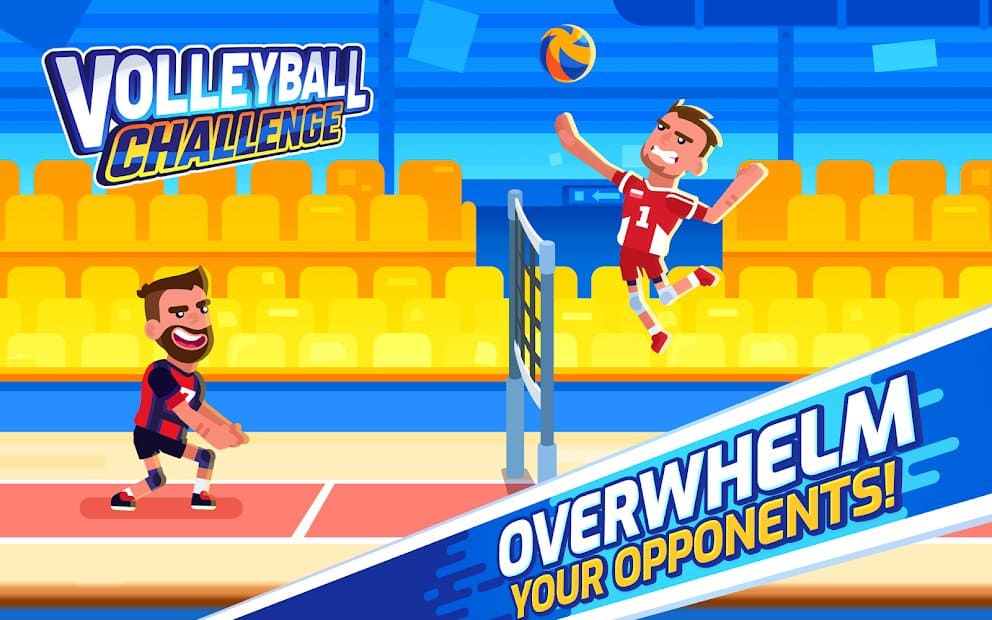 Volleyball Challenge